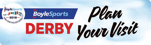 Click here to plan your visit to the BoylesSports Irish Greyhound Derby