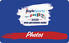 Click here to view photos of the 2020 BoyleSports Irish Greyhound Derby