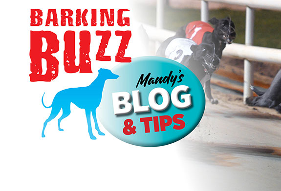 Get some insider info on the racing before you go with Mandy's tips on the Barking Buzz Blog