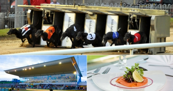 For a fun night out in Cork this summer, visit Curraheen Park Greyhound Stadium for the Irish Independent Irish Laurels