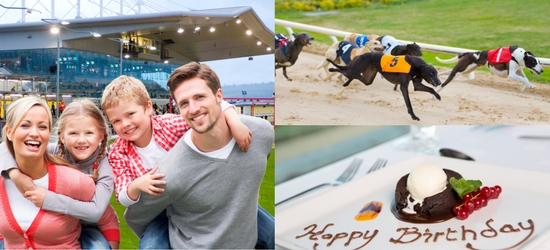 For a fun family activity in Dublin make it a Night at the Dogs in Shelbourne Park Greyhound Stadium.