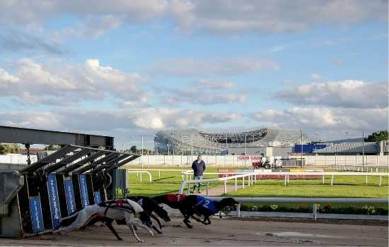 Shelbourne Park Greyhound Stadium is open for pre-booked customers in Dublin. Photo: Shelbourne Park greyhounds coming from traps with a view of infield and the Avviva Stadium