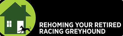 Click here to find out how rehome your retired racing greyhound